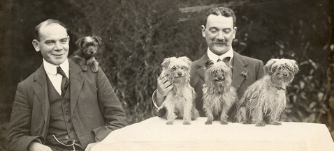 Old School Dog Training – Tips from the Past