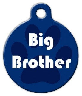 Big Brother Dog Identity Tag