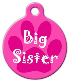 Big Sister Pet ID Tag