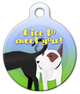 Nice to Meet You Pet ID Tag