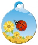Lady Bug Pet Tag