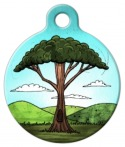 image: Tall Tree Pet ID Tag