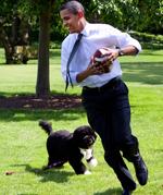 Top 5 Celebrity Dog Names - Barack Obama