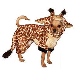 Dog Halloween Costume Giraffe