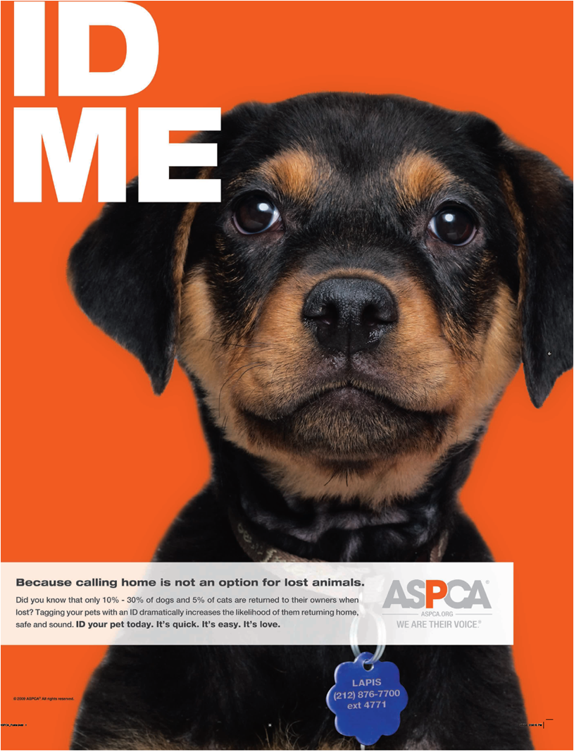 ASPCA Research Confirms: Pet ID Tags are Absolutely Essential | Dog ...
