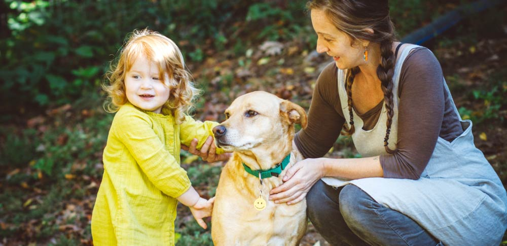 5 Ways to Become an Animal Advocate