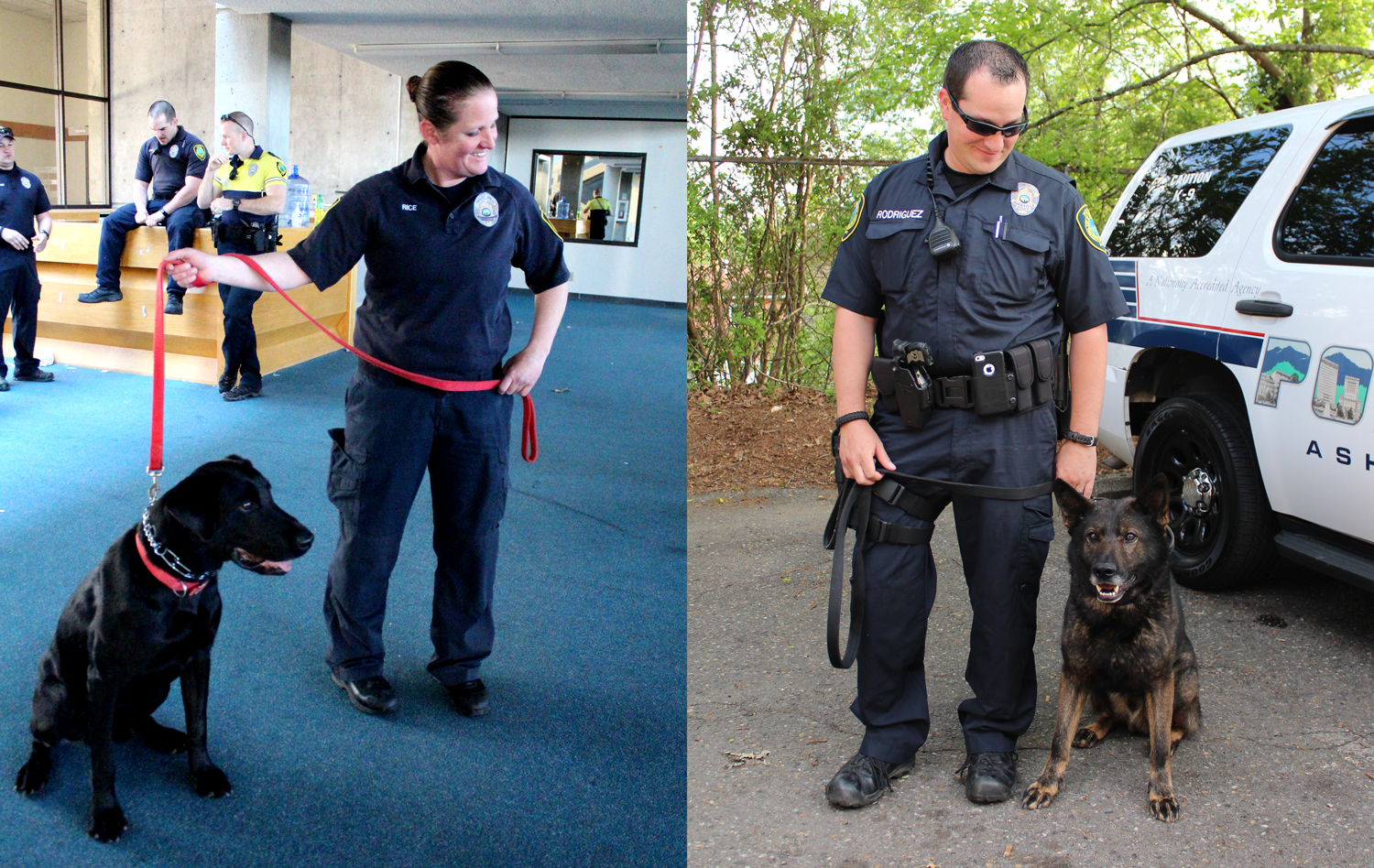 Meet the Officers of the Asheville Police K9 Unit