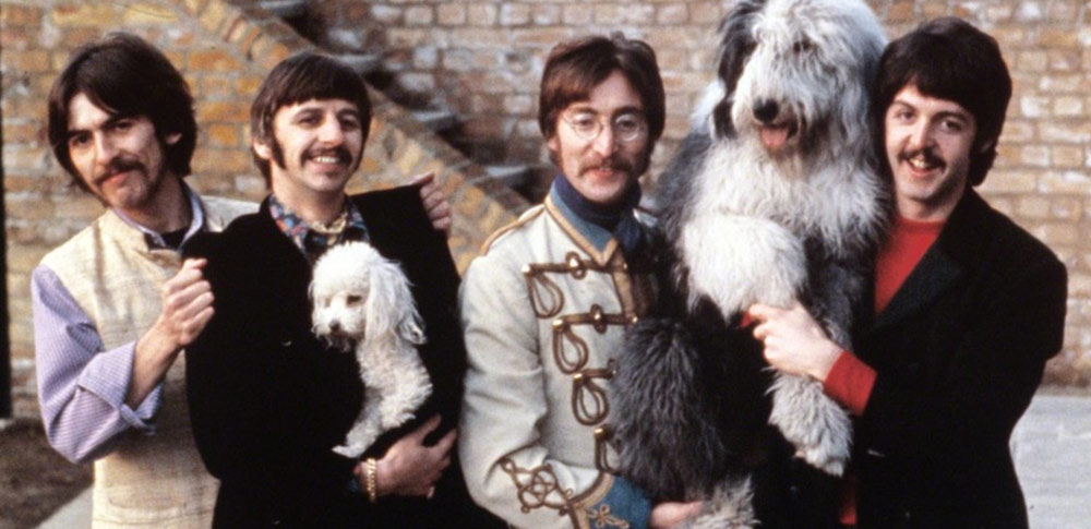 The Best Beatles Song for Dogs