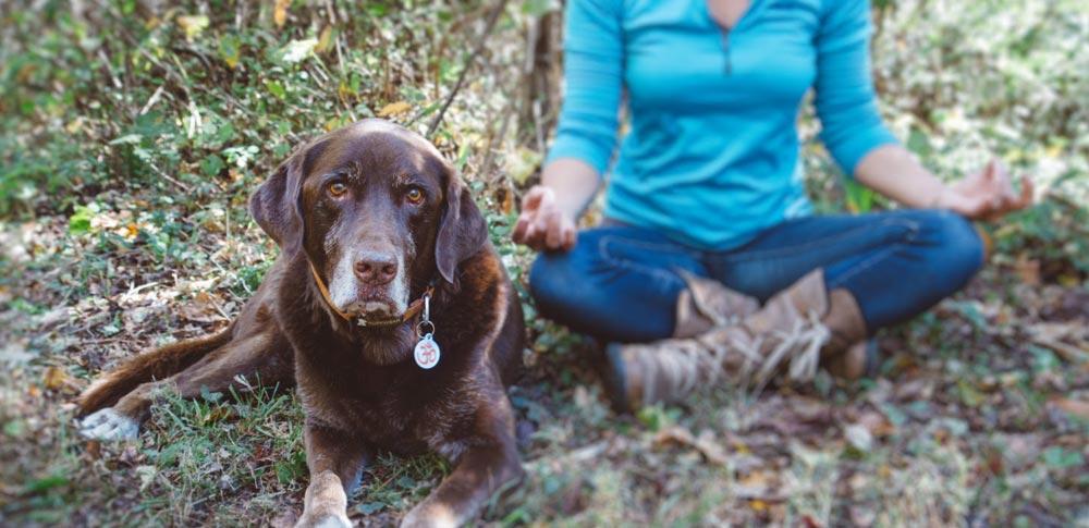De-stress with Doga