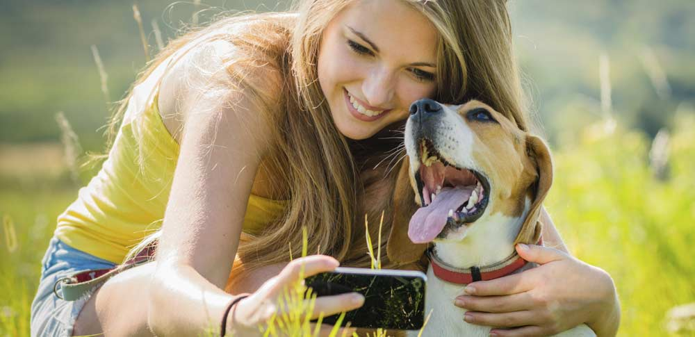 The Top 10 Dogs of Instagram