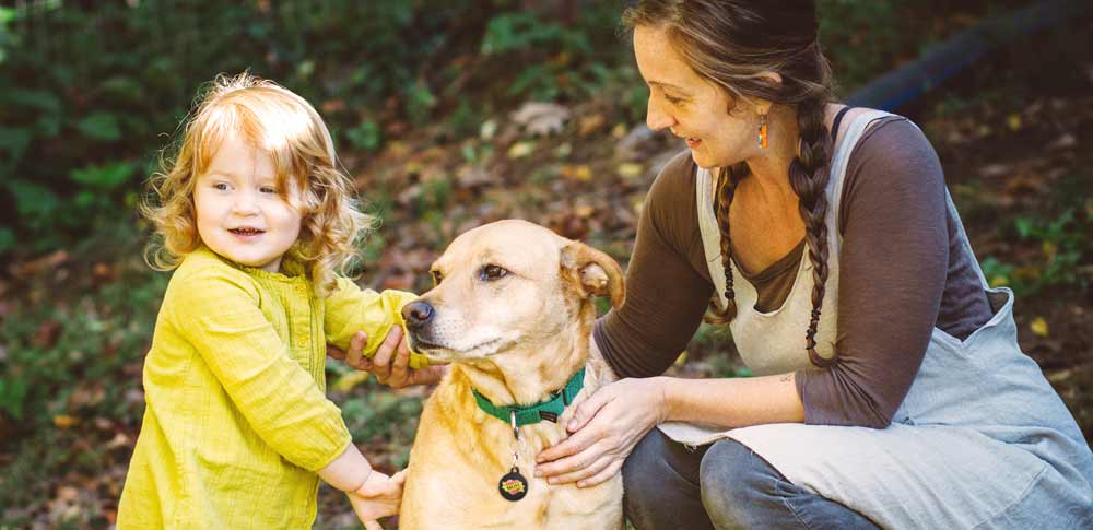 Stories of Dogs and Their Mamas