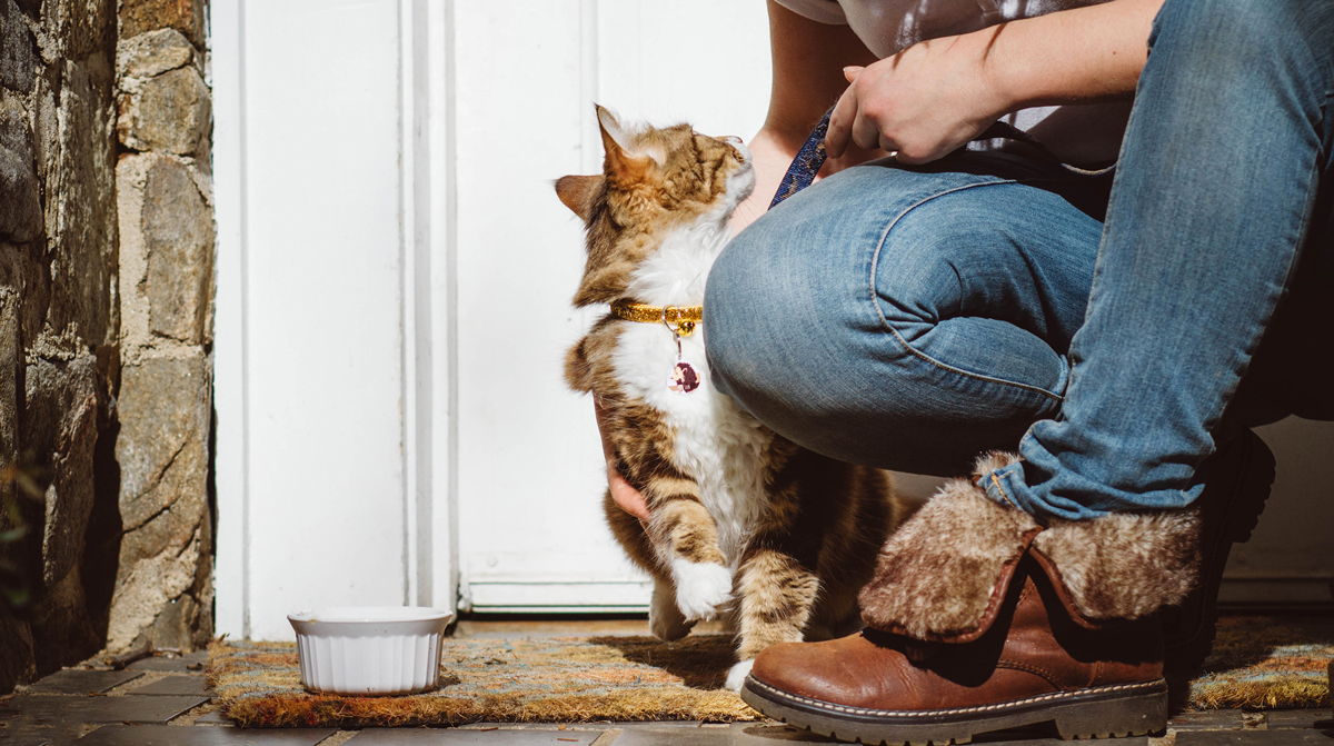 How Pet Sitters are Keeping Best Friends Together