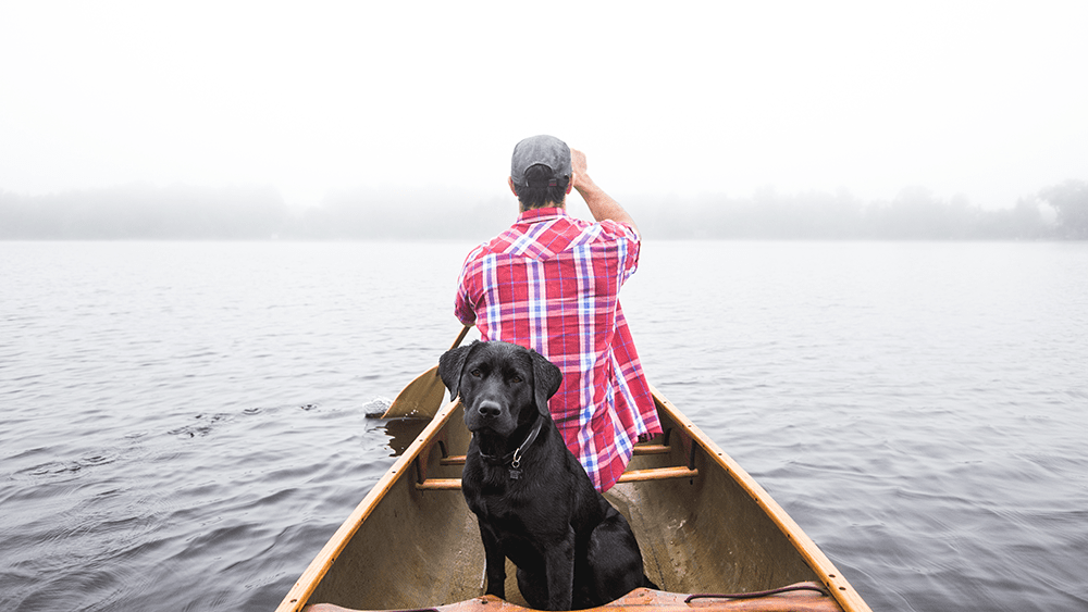 Dog boating with owner.