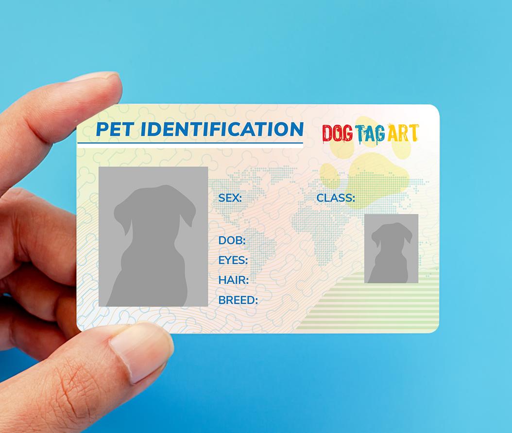 Pet ID License Card