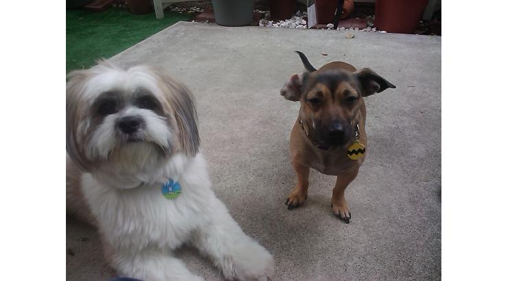 Max & Charlie