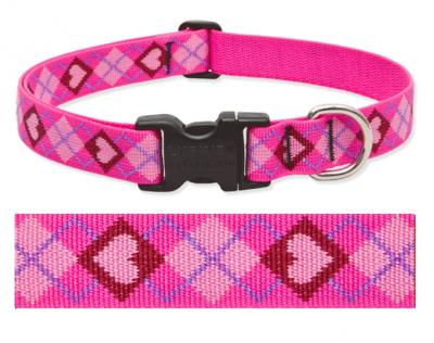 Puppy Love Lupine Pattern Pet ID Tag