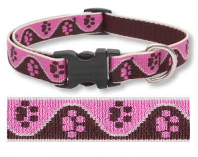 Tickled Pink Lupine Pattern Dog ID Tag