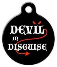 Devil in Disguise Dog ID Tag