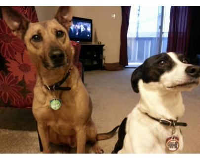 Tucker & Keilan