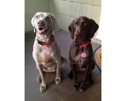Bela & Lilah
