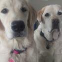 Kiya and Max