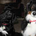 Layla and Maggie