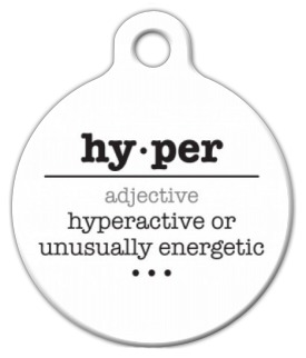 Dog Tag Definition Of Hyper on Lupine Dog Collars