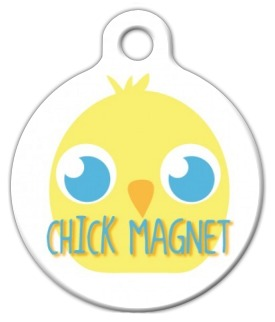 Chick Magnet Pet ID Tag