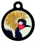 Image: Exotic Bird Cat ID Tag