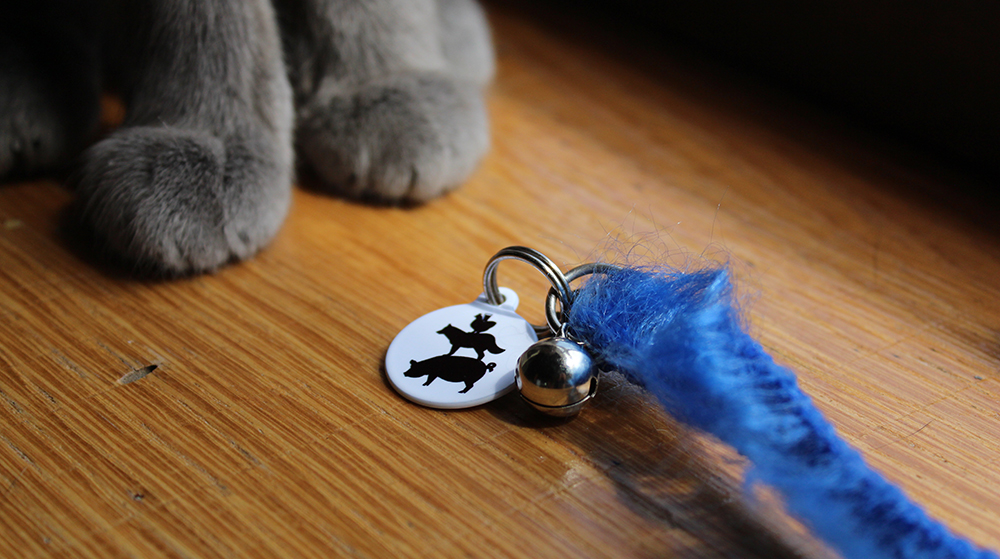 Get your Sanctuary Brewery pet ID tags at their store in Hendersonville