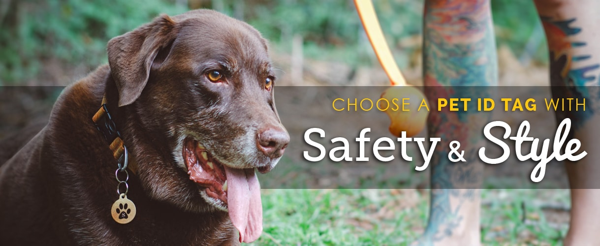 Dog Home Page Banner