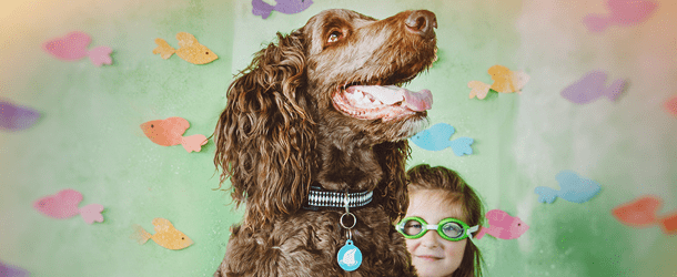 July Home Page Banner Dog - mobile