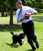 Top 5 Celebrity Dog Names - Barack Obama