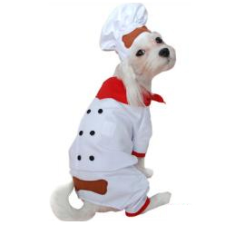 Dog Halloween Costume Chef