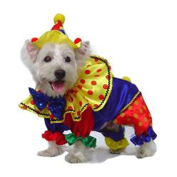 Dog Halloween Costume Clown