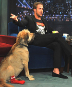 Top 5 Celebrity Dog Names - Ryan Gosling