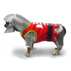 Dog Halloween Costume Knight