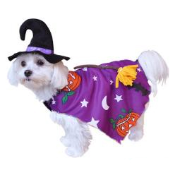 Dog Halloween Costume Witch