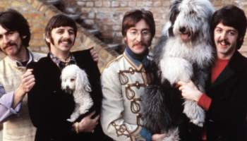 Beatles with Dogs