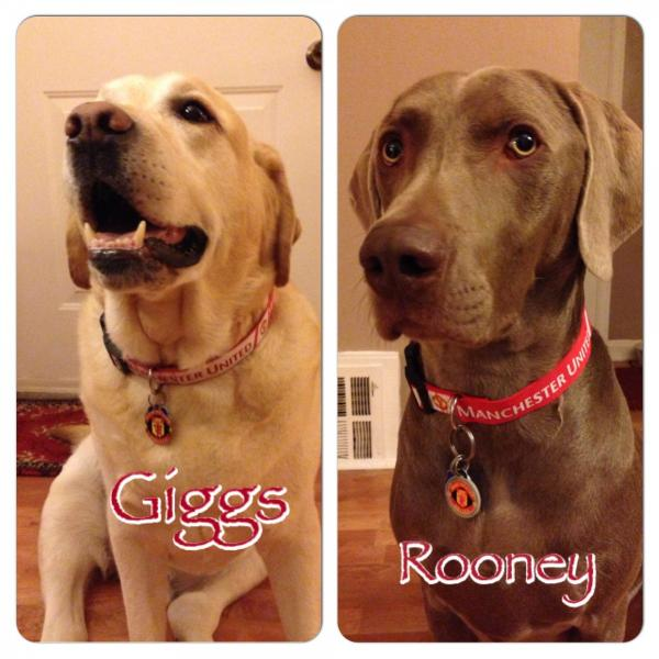 Giggs Rooney Dog Tag Art
