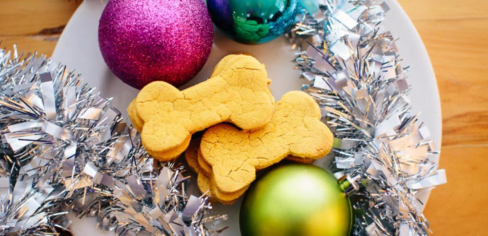 Holiday Peanut Butter Pumpkin Dog Treats